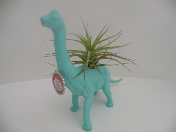 Dinosaur planter with air plant and personalized bottlecap. College dorm or kids room decoration.
