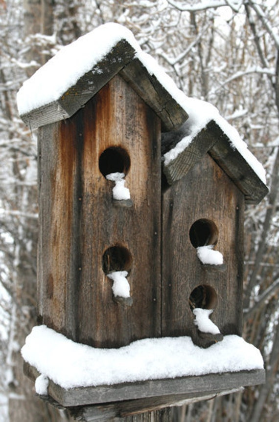 Bird Houses, Lamoville, NV