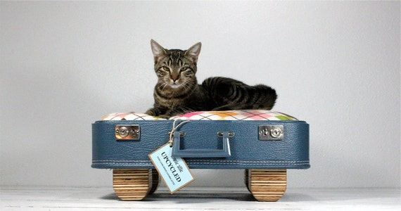 Upcycled Suitcase Pet Bed Handmade Wood Legs
