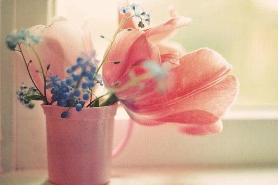 Розовый потертый шик фотографию цветка - Soft 8x10 Сорбет стока - элегантный жимолость розовый естественный спальне свет