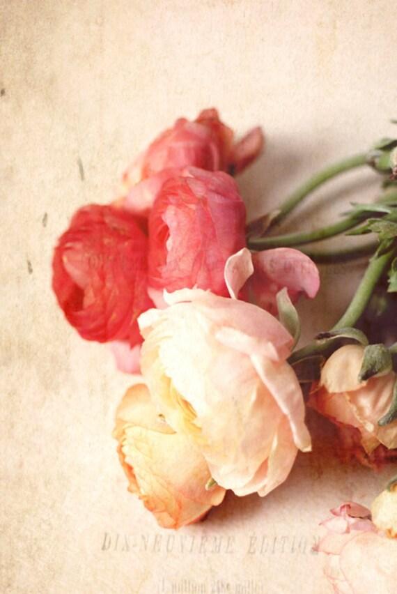 Романтическое сердце.  цветок фотографии.  романтический декор дома.  розовый потертый шик стены искусства.  подарок для нее.  готовые рамы.  подарок до 30 лет
