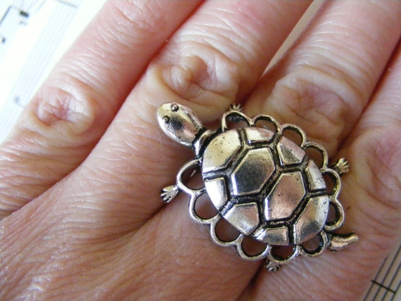 Ring Pet Turtle