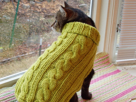 cable knit green cat sweater for st patricks day
