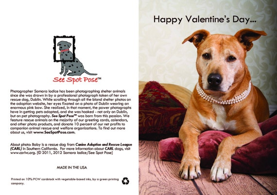 Rescue dog greeting card - Happy Valentine's Day humorous (female)