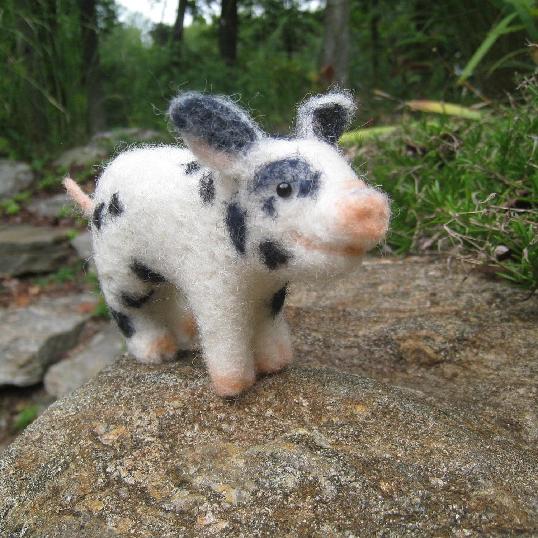 Teacup Pig Average Wei...